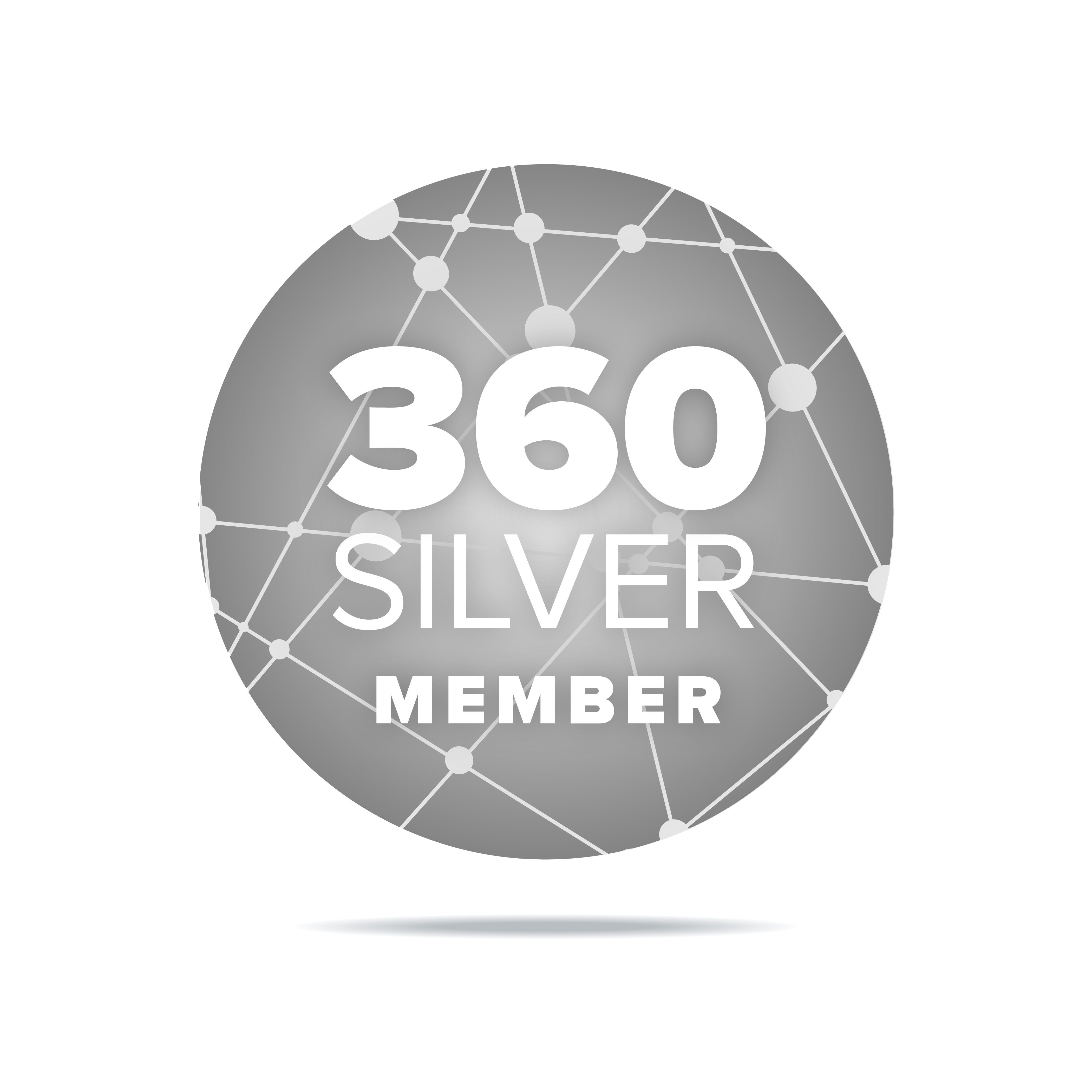 360 Silver Icon